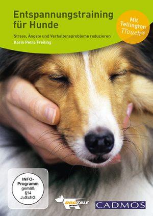 Entspannungstraining für Hunde mit Karin Petra Freiling. Streaming